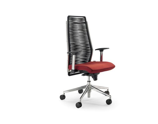 scaun directorial